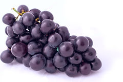 Isolated grapes Stock Photography