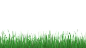 Isolated grass weaving, loopable Stock Photos