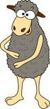 Isolated gray cartoon sheep, cartoon style Royalty Free Stock Images