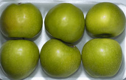 Isolated green apples Stock Photography