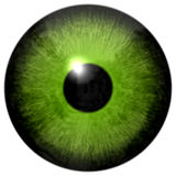 Isolated green eye illustration Royalty Free Stock Images