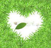 Isolated green heart grass photo frame with lamp Royalty Free Stock Images
