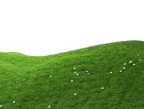 Isolated green hill Stock Image