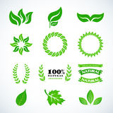 Isolated green leaves. Golden laurel leaves set. Design set for emblem, logotype. Vintage logotype, icons. Vector format. Isolated green leaves. Golden laurel Stock Photography