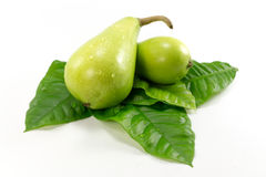 Isolated Green Pear Stock Photography