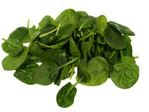 Isolated green spinach leaves Royalty Free Stock Photos