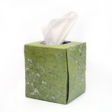 Isolated Green Tissue Box. Green Box of Tissues on White Background Stock Photo