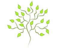 Isolated Green Tree Clip Art vector illustration