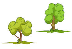 Isolated green trees Royalty Free Stock Photography