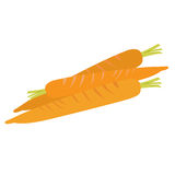 Isolated group of carrots Royalty Free Stock Photos