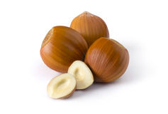 Isolated group of hazelnuts Royalty Free Stock Photography