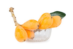 Isolated group of loquat fruits Stock Images