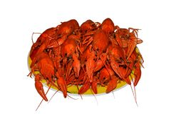 Isolated group of red boiled crawfishes on a yellow plate, closeup stock image