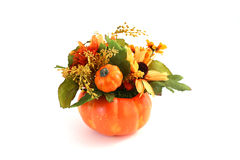 Isolated Halloween Flowers Stock Image