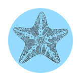 Isolated hand drawn black outline starfish on blue round background. Star ornament of curve lines. Stock Photos