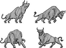 Bull Sketch Set. Isolated hand drawn bull collection in different variation Royalty Free Stock Image