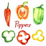 Peppers set with slices. Isolated hand painted watercolor illustration Stock Photos