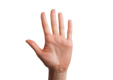 Isolated hand shows the number five. Royalty Free Stock Image