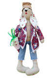 Isolated handmade doll hare in fashionable clothes Royalty Free Stock Photos