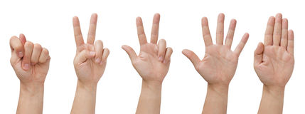 Isolated hands. Set of five isolated hands with various gestures stock photos