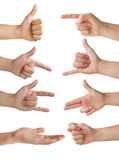 Isolated hands. Set of eight isolated hands with various gestures royalty free stock images
