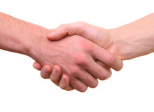 Isolated hands shaking handshake. On white Royalty Free Stock Image