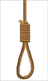 Isolated HAngman Noose. A hemp rope noose over a white background Stock Photography