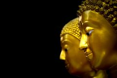 Isolated head of the Buddha. Stock Photo