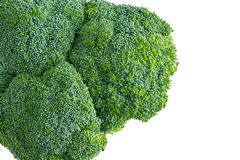 Isolated head of farm fresh broccoli Stock Photo