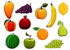Isolated healthy organic sweet fruits set Royalty Free Stock Image