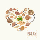 The isolated heart of nuts and seeds Royalty Free Stock Images