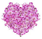 Isolated heart from pink orchid flowers Stock Images