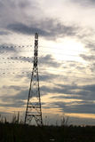 Isolated high voltage tower on the field Royalty Free Stock Photo
