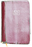 Isolated Holy Bible Royalty Free Stock Photography