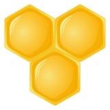 Isolated honeycomb Royalty Free Stock Photography