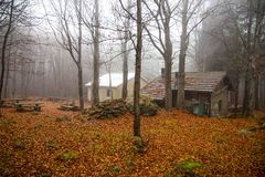 Isolated house in the beeches forest in Autumn. Isolated house in the beeches forest / woods/  old house / isolated / stone house / autumn / forest / fallen Royalty Free Stock Images