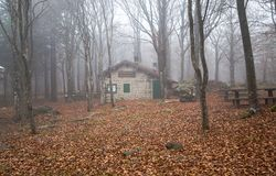 Isolated house in the beeches forest. Isolated house in the beeches forest / woods/  old house / isolated / stone house / autumn / forest / fallen leaves Stock Images