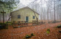 Isolated house in the beeches forest in Autumn. Isolated house in the beeches forest / woods/  old house / isolated / stone house / autumn / forest / fallen Stock Photography