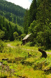 Isolated house in the fir forest Royalty Free Stock Image