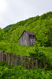 Isolated House in the forest Stock Image