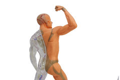 Isolated human anatomy model. Isolated human body model toy Stock Image