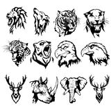 Isolated illustration animals. Isolated illustration of the head of an eagle, an owl, a deer, a lion, a wolf, a tiger, a panther, a leopard, a bear, a rhinoceros Stock Photo