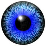 Isolated illustration of blue eye Royalty Free Stock Images
