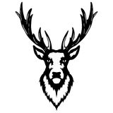 Isolated illustration of a deer head. Vector illustration of a deer head royalty free illustration