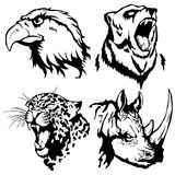 Isolated illustration of a head of an eagle, a bear, a leopard a. Nd a rhinoceros Royalty Free Stock Photography