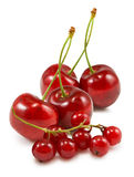 Isolated image of cherries close up Stock Images