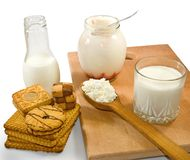Isolated image of dairy products Stock Image