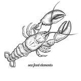 Isolated image lobster on white background. stock illustration