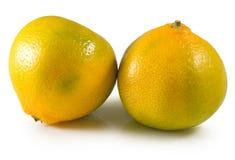 Isolated image of orange close-up Royalty Free Stock Photo