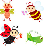 Isolated Insect Illustrations, Bee, Ladybug, Grasshopper, Fly. Isolated insect illustrations of bee, ladybug, grasshopper, fly, pink flowers, red flowers, green Royalty Free Stock Photography